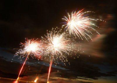 Fireworks 1 Mark Linton