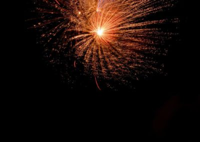 Fireworks 3 Mark Linton